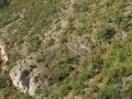 Vue d'hélicoptère des causses  et des Templiers